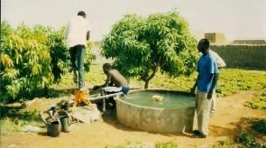 Wasserpumpen3.jpg